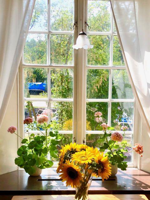 konferens, fönster